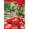 Culture Readers:Holidays: 1-4 La Tomatina スペインのトマト祭り